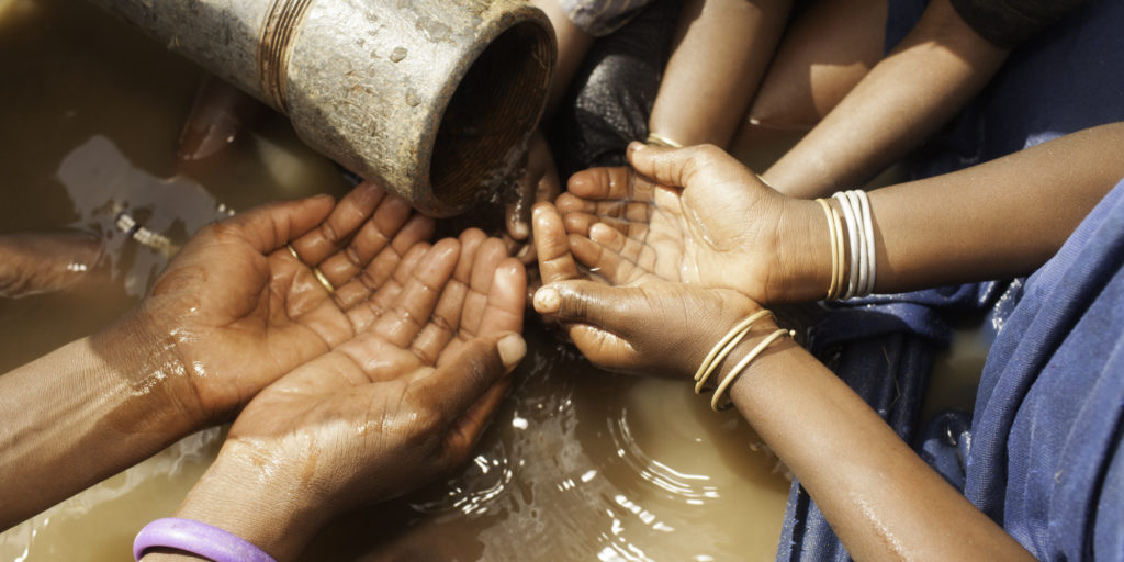 Importance of clean water essay - Live export essay